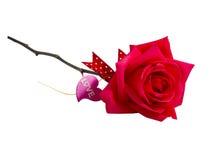 Rose et coeur de rouge avec AMOUR des textes Images libres de droits