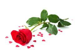Rose et coeurs Photographie stock libre de droits