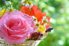 Rose et fleurs de fines herbes photo libre de droits