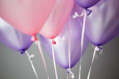 rose et fond pourpre de ballons d'hélium, ombre de variétés de rose photographie stock libre de droits
