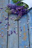 Rose et frontière de loup pourpre de fleurs Anniversaire, Mother& x27 ; jour de s, Valentine& x27 ; jour de s, carte le 8 mars, d Image libre de droits