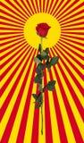 Rose et le soleil Art de bruit Images libres de droits