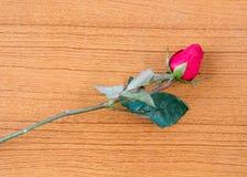 Rose et livre Photographie stock libre de droits