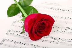 Rose et musique de rouge Photos stock