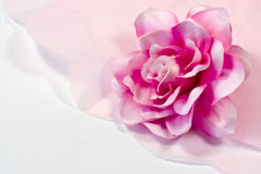 Rose et papier de soie de soie Image libre de droits