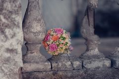 Rose et parapet Photos stock