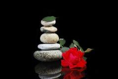 Rose et pierres Photo stock