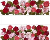 Rose et roses rouges sur le fond blanc illustration de vecteur