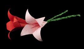 Rose et rouge fleurit le noir d'origami d'isolement Photos stock