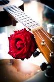 Rose et ukulélé de rouge Type de cru Images stock