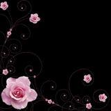 Rose et vecteur de remous Photo stock