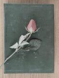 Rose et vieux livre Photo libre de droits