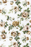 Rose Fabric background, Fragment of colorful retro tapestry text Royalty Free Stock Image