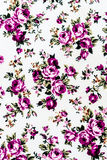 Rose Fabric background, Fragment of colorful retro tapestry text Stock Images