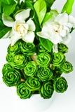 Rose fatte dai fogli del pandanus Immagini Stock