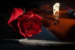 Rose with feather on book and violin. Stock Photos