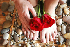 Rose Feet Hand. Pair of pretty red roses with manicured hand and pedicure feet on river rocks and bamboo royalty free stock photos