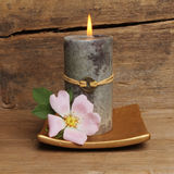 Rose and Feng Shui candle. Wild dog rose and burning Feng Shui candle against a background of old cracked and weathered wood Stock Photos