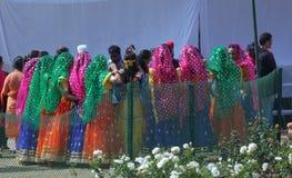 Rose Festival, mostra cultural, Chandigarh, Índia Imagem de Stock