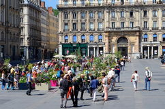 Rose Festival, Place des Terreaux, Lyon, France Stock Image