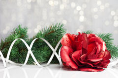 Rose with festive background Royalty Free Stock Image