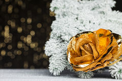 Rose with festive background Stock Photography