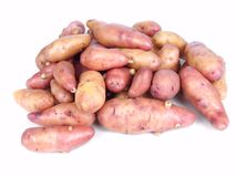Rose fingerling potatoes Royalty Free Stock Photos