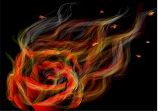 Rose in fire. Fiery abstract rose on the black background Stock Images