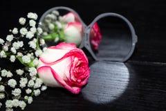 Rose fleurissent le mensonge près du miroir ouvert et se sont reflétées dans lui images libres de droits