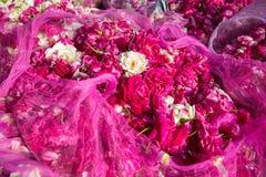 Rose fleurit en vente sur le marché en plein air Photos stock