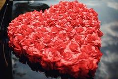 Rose fleurit le coeur au-dessus du blanc valentine Amour Images libres de droits