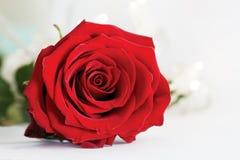 Rose - fleurs de mariage sur la table Photo stock