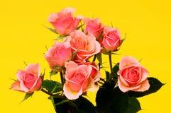 Rose Floral arrangement Royalty Free Stock Images
