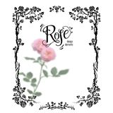 Rose floral frame Stock Photography