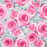 Rose floral texture Royalty Free Stock Photo