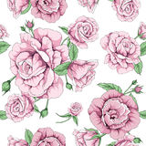 Rose floral vector pattern. This is vector of flower pattern seamless Stock Photo