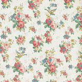 Rose Floral Wallpaper Shabby Chic d'annata Fotografia Stock Libera da Diritti