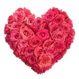 Rose florece el corazón sobre blanco. Tarjeta del día de San Valentín. Amor Imagen de archivo libre de regalías