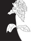 Rose flower. Black and white template with rose flower Royalty Free Stock Image