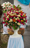Rose Flower Fotografia de Stock Royalty Free