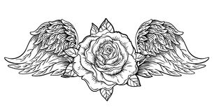 Rose flower with Angel or bird wings. Blackwork tattoo flash. Vi Royalty Free Stock Photography