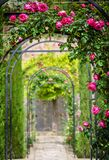 Rose flower arches royalty free stock images