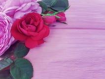 Rose flower blossom natural summer frame pink background table greeting. Rose flower blossom on pink wooden background holiday summer frame natural royalty free stock image