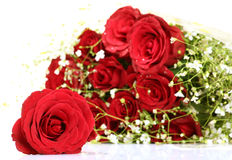 Rose flower bouquet. Beautiful shot of rose flower bouquet Royalty Free Stock Photos