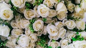 Rose - Flower, Flower, Bouquet, Bride, Cream - Dairy Product stock photography