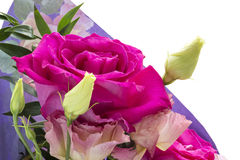 Rose flower bouquet isolated Stock Photo