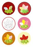 Rose flower bouquet with template. Illustrations of various hues of roses with leaves arranged as bouquets on a button type circular background Stock Images