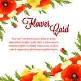 Rose flower card Royalty Free Stock Image