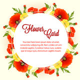 Rose flower card Stock Photography