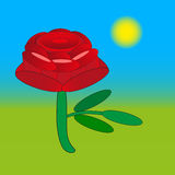 Rose flower drawing on  green Royalty Free Stock Photo